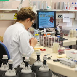 Biomedical scientist working in the Trust Pathology lab
