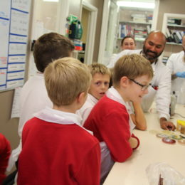 Badger Hill academy school children looking at cultures in microbiology